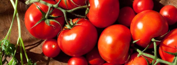 Tomatoes_WebBanner_4932_062012